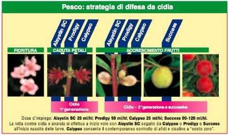 Calendario Trattamenti Frutteto.Bayer Per Le Drupacee Tutte Le Linee Tecniche Per La Difesa