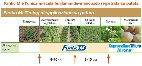 Fantic M - antiperonosporico Isagro Italia - posizionamento su patata
