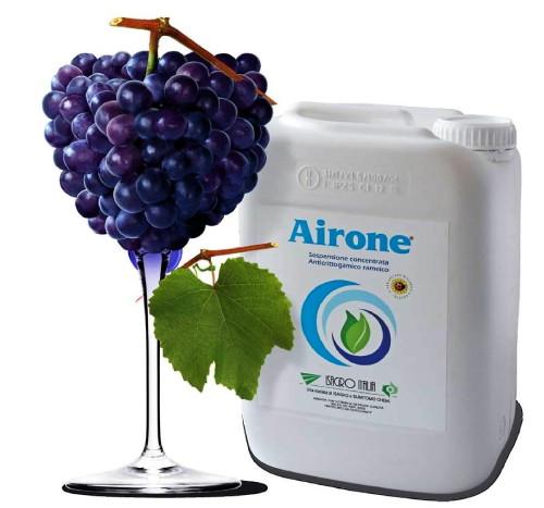 airone-isagro-anticrittogamico-rameico-5