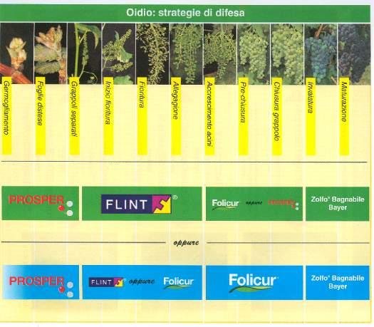 Calendario trattamenti vigna mulino elettrico per - Calendario trattamenti piante da frutto ...