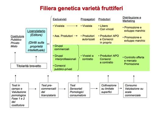 Certificazione in vivaismo - la filiera - by prof. Sansavini