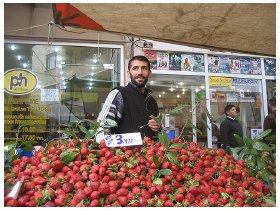Fragola - mercato turco