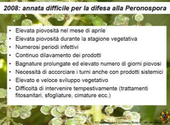 Peronospora Iasma