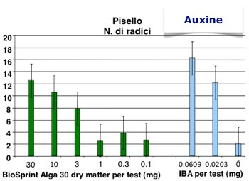 NPK-Chem - Auxine