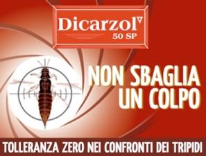 Dicarzol 50 SP: tolleranza zero per i tripidi