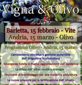 Vigna & Olivo 2018: è di scena l'olivicoltura