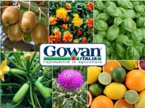 Emergenze fitosanitarie, ora disponibili nuove soluzioni