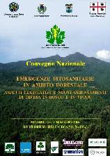 Emergenze fitosanitarie in ambito forestale