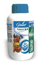 Galeo, il fungicida che difende pesche e nettarine