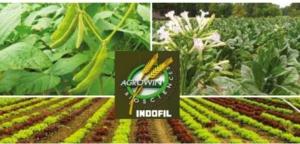 Agrowin Biosciences, quindici passi nella nutrizione