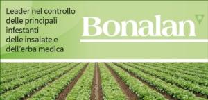 Bonalan: leader nel controllo delle principali infestanti delle insalate e dell'erba medica