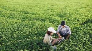 Il consulente fitosanitario: chi è, cosa fa e come si forma