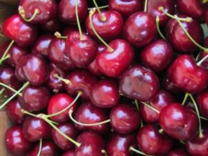 Danadim 400: estensione d'impiego su ciliegio