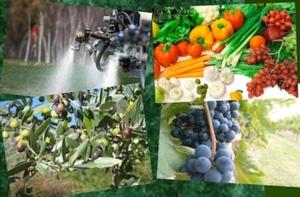 Uso sostenibile degli agrofarmaci, le relazioni