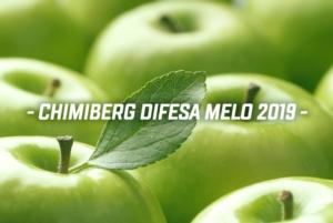 Soluzioni Chimiberg per la difesa del melo