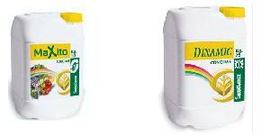 Dinamic e Maxito, due prodotti innovativi
