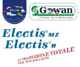 Electis® MZ, Electis® R: l'eccellenza per la salvaguardia del tuo reddito