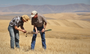 Fertilizzanti, 144 schede di concimazione su Fertilgest