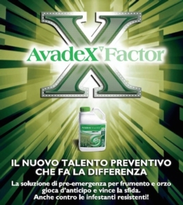 AvadeX Factor: il nuovo talento preventivo che fa la differenza