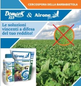 Domark 125 e Airone Più: le soluzioni vincenti contro la Cercospora della barbabietola