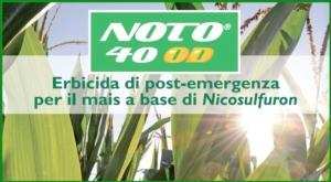 Il nuovo Noto 40 OD e le altre soluzioni per il diserbo post-emergenza del mais