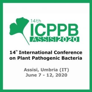 La salute delle piante e l'impatto dei batteri patogeni vegetali