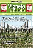 Vigneto e frutteto, guida alla difesa (aprile 2010)