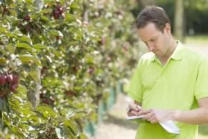 Il Servizio fitosanitario nazionale si rinnova e si potenzia