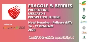 Fragole & berries protagonisti dell'evento targato Lameta
