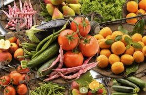 Il manifesto dell'agroalimentare sostenibile