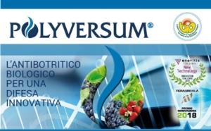Polyversum, l'antibotritico bio per una difesa innovativa