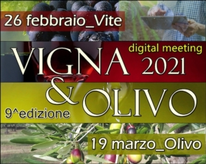 EVENTO ONLINE - Vigna & Olivo 2021, appuntamento con l'olivicoltura