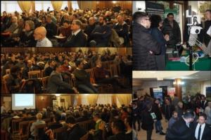 Oliveti, la gestione nella moderna filiera olivicola