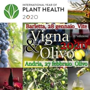 Convegno - Vigna & Olivo 2020: innovazione e sostenibilità nella moderna gestione degli oliveti