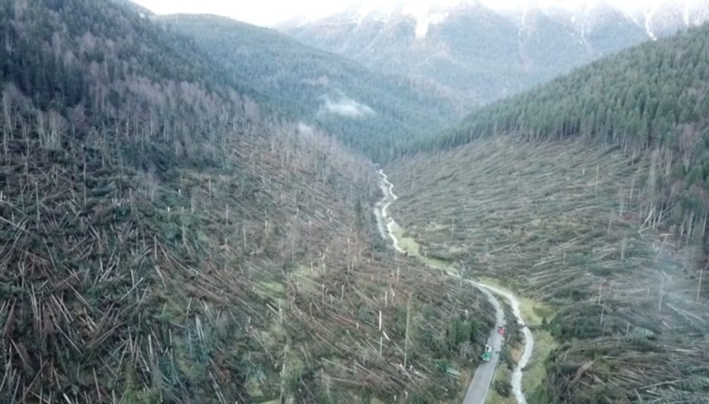 alberi-abbattuti-alpi-ottobre-2018.jpg