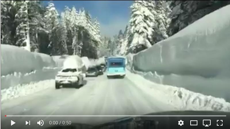 neve-california