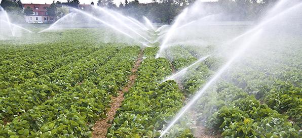 Il mondo dell'acqua e dell'irrigazione a portata di click