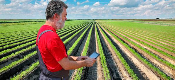 AgroInnovAzione - L'innovazione scende in campo: un filo diretto tra ricercatori e agricoltori