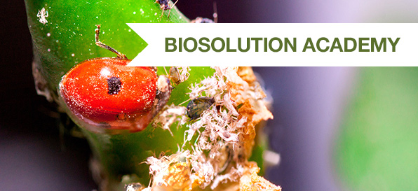 La difesa biologica delle piante in un corso di alta formazione