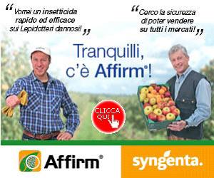 AFFIRM: la migliore soluzione contro i lepidotteri di colture frutticole, orticole e vite