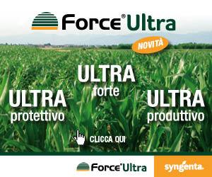 Contro la diabrotica e gli insetti terricoli del mais, ULTRA in tutti i sensi