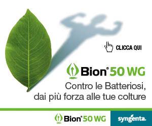 BION 50 WG: contro le Batteriosi, dai più forza alle tue colture