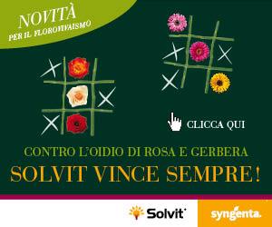 Contro l'oidio di Rosa e Gerbera SOLVIT vince sempre!