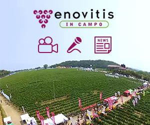 Enovitis in campo: video, news, reportage