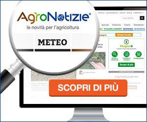 Il meteo per l'agricoltura: le tue previsioni personalizzate