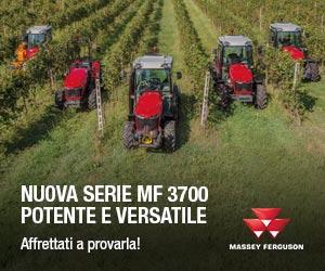 Serie MF 3700, lo specialista di Massey Ferguson!