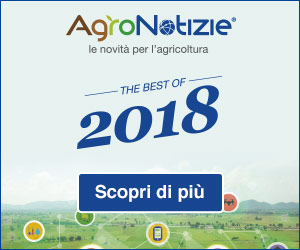 2018: un anno intenso… in breve