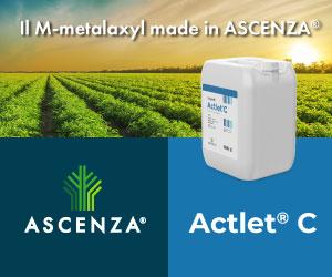 ACTLET® C, il M-Metalaxyl targato ASCENZA