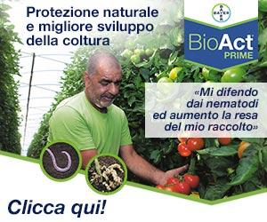 Da Bayer il nuovo nematocida di origine naturale