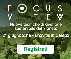 Il convegno sulla viticoltura sostenibile a Enovitis
